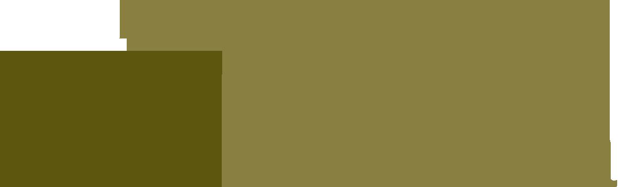 Martín Laucirica Grupo Asesor